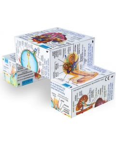 Human Body Learning Cube Book